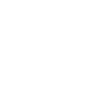 Shannon Losi Group
