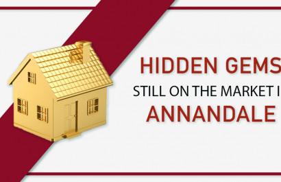 Hidden Gems 💎 Still On The Market In Annandale