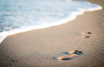 Beach Please! Sonoma County Beaches to Visit