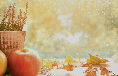 Advantages of Hiring a Real Estate Agent This Fall