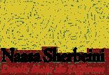 Naasa Sherbeini | Coldwell Banker