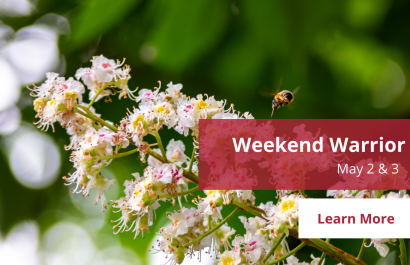 Weekend Warrior - May 2-3 | Amy Jones Group