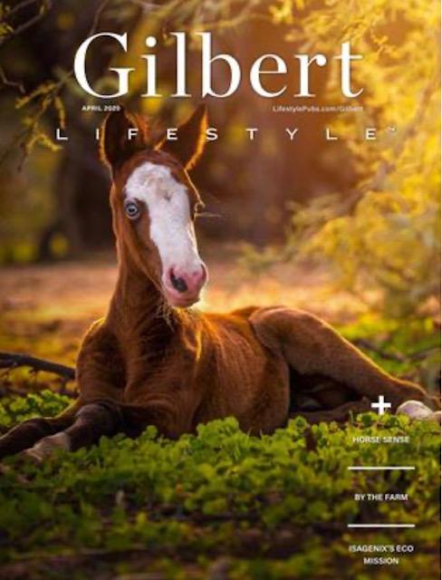 Gilbert Lifestyle Magazine - April