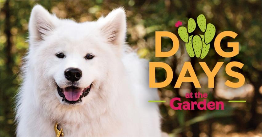 Dog Days at The Garden