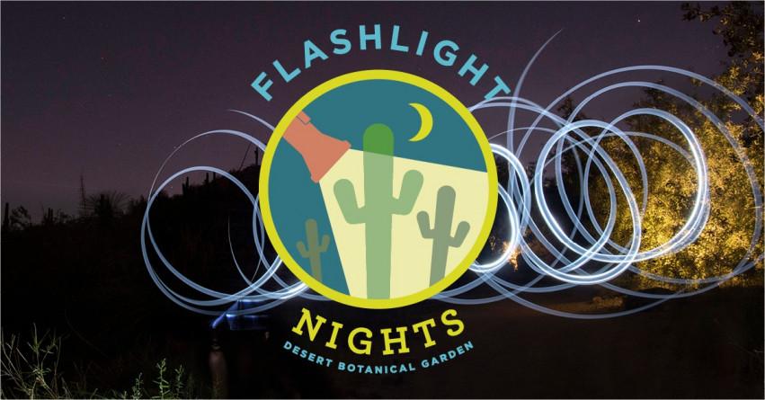 Flashlight Nights