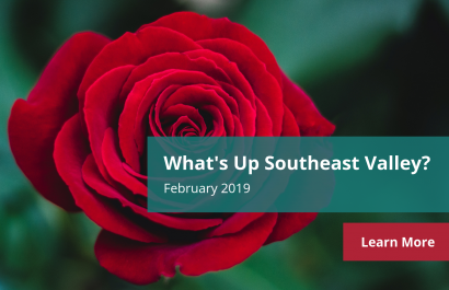 What's Up Southeast Valley? - February 2019 | Amy Jones Group