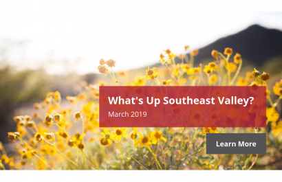 What's Up Southeast Valley? - March 2019 | Amy Jones Group