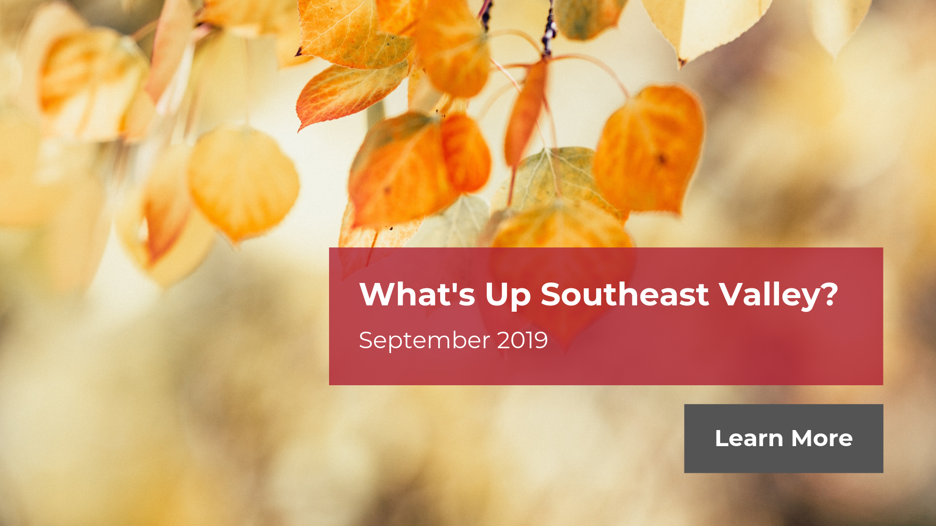 What's Up Southeast Valley - September 2019