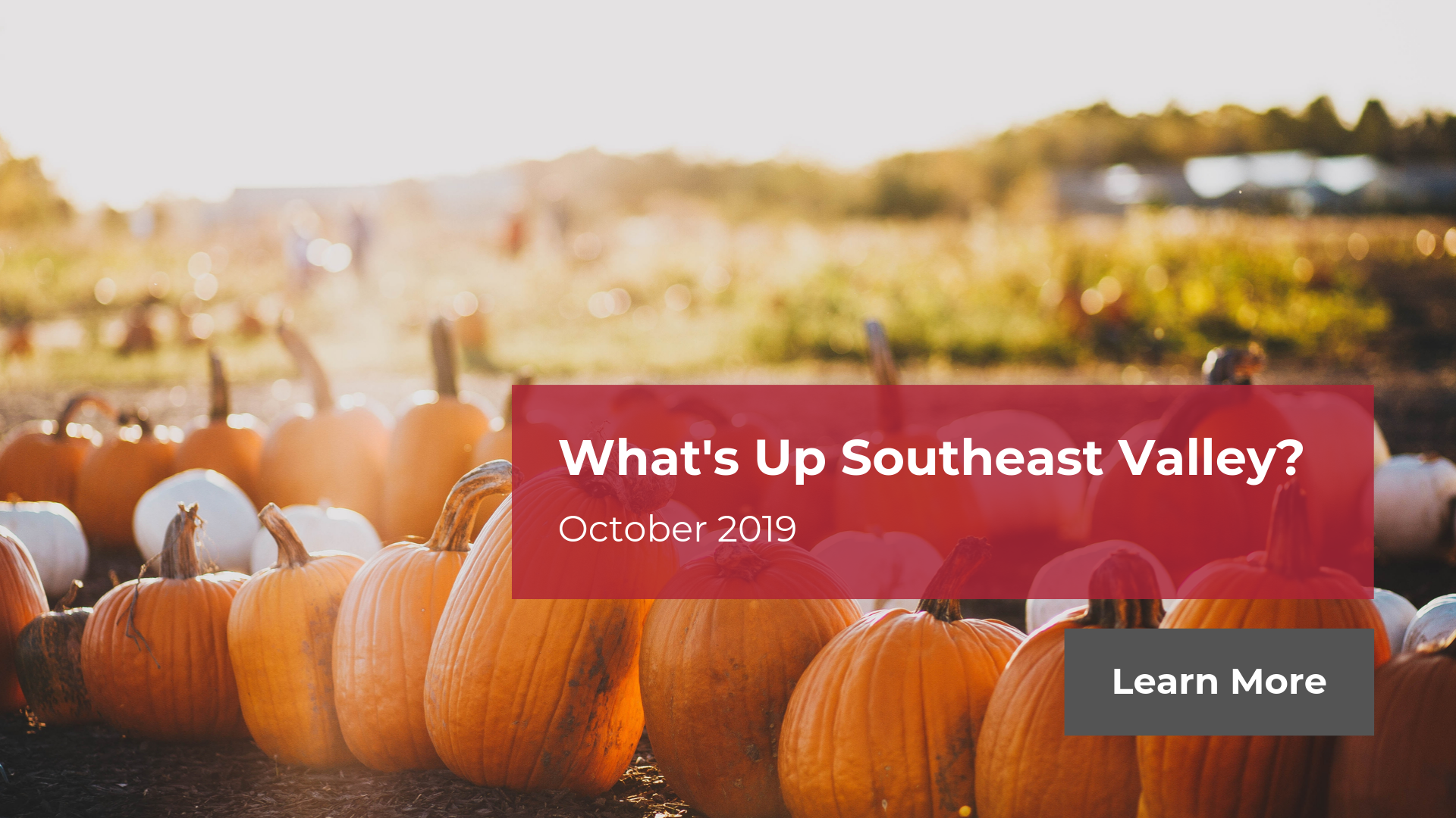 What's Up Southeast Valley - October 2019