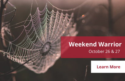 Weekend Warrior - October 26 - 27 | Amy Jones Group