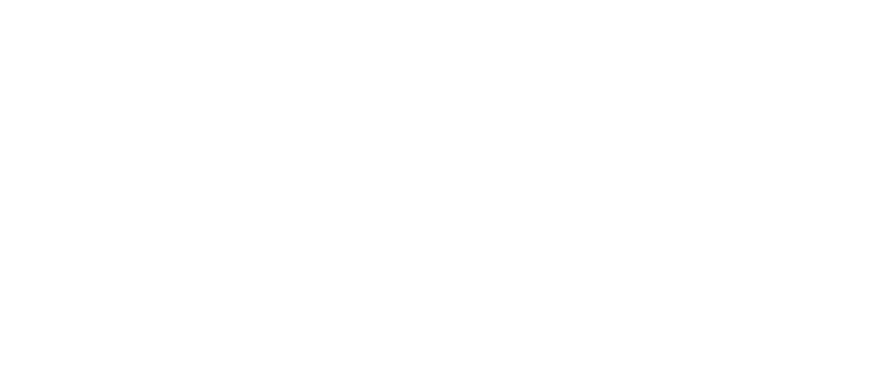 The Bolt Group