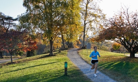 Local Knoxville Parks and Recreation areas