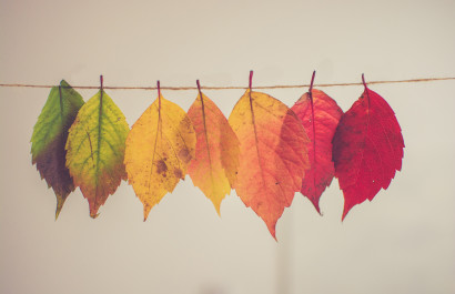Reasons You Should Consider Selling This Fall | Slocum Real Estate and Insurance