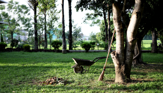 A wheelbarrow used after buying a house.