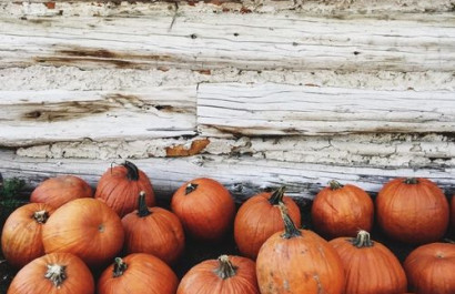 Fun Things To Do In KC - Fall Edition