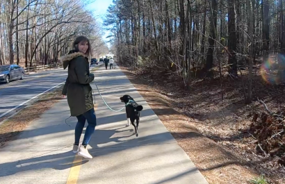 My Marietta | Favorite Places to Walk Our Dog in Marietta