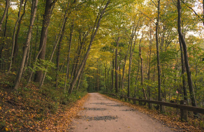 Fall & Winter Hikes, Runs & Walks On Long island
