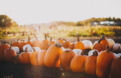 8 October Events in Southern NH