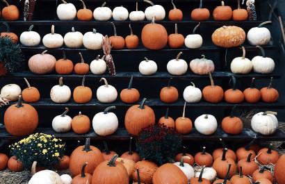 Fall Festivities & Pumpkin Patches | OKC Metro