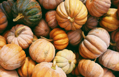 Top 10 Fall Activities to do This Week Around OKC's Urban Core