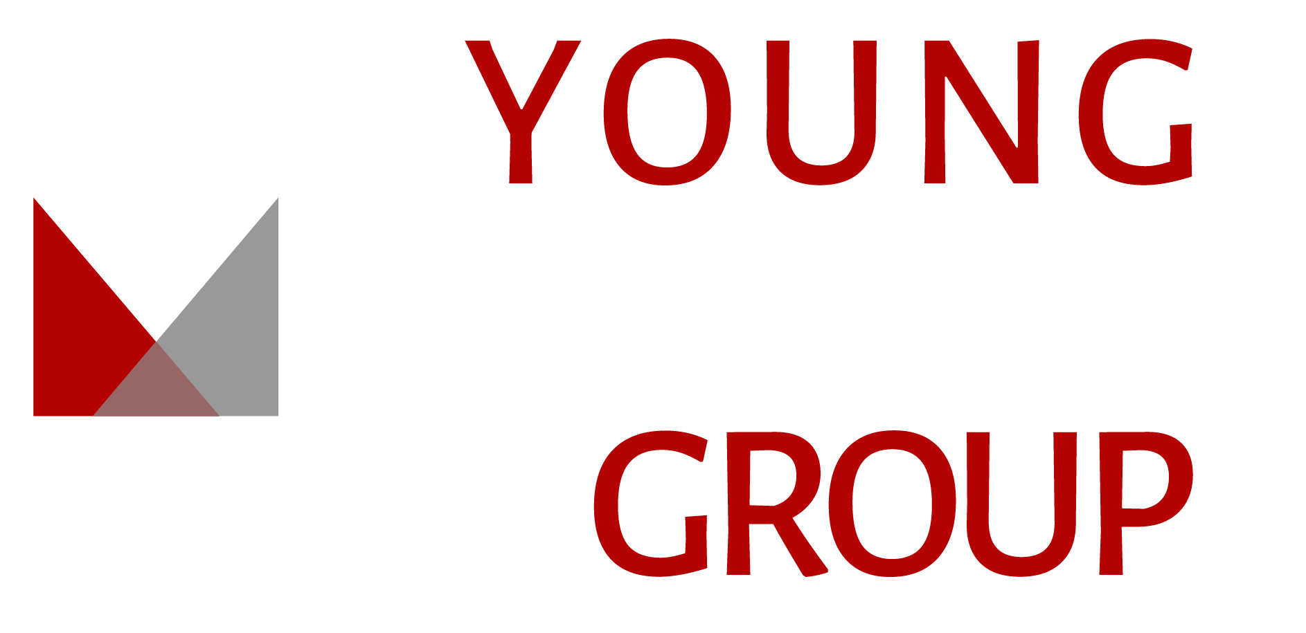 Young Marketing Group, Realty Executives