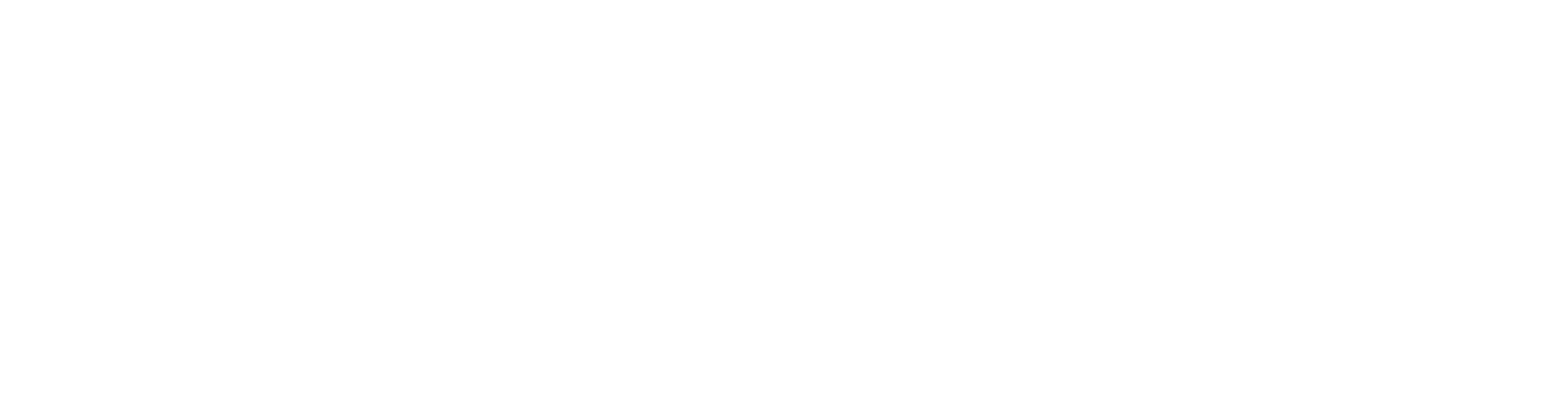 Tampa Bay Home Team