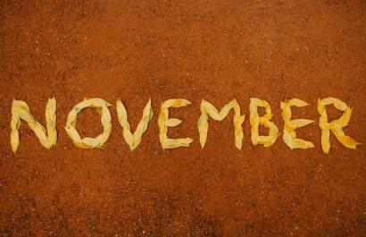 Your Checklist for November