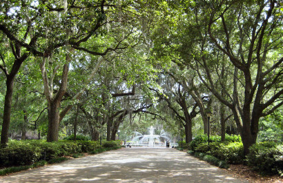 Five Best Photo Spots in Savannah