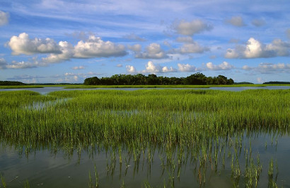 Hot Spots for Perfect Snapshots in Hilton Head