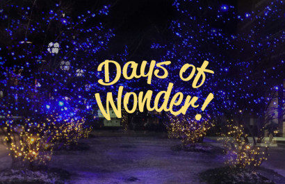 Best of December in the Ann Arbor Area