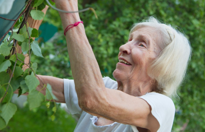 The Nitty Gritty on Low-Maintenance and Budget-Friendly Landscapes for Seniors