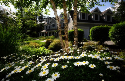 8 Ways To Boost Your Curb Appeal This Spring