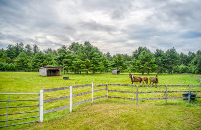 Top 10 Country Homes & Horse Properties for 9/24/2021