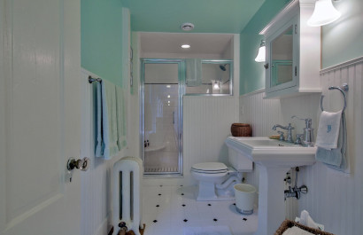 Paint Your Bathroom Blue