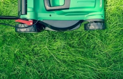 6 Tips for a Better Lawn