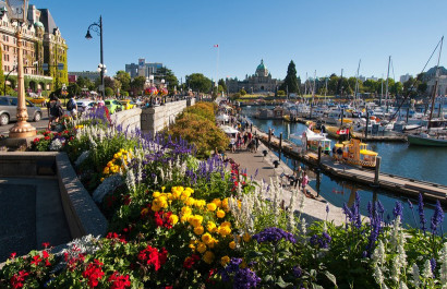 CNN names Vancouver Island as one of 2020's top travel destinations!