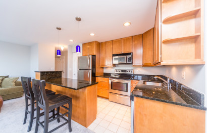 607 W. Wrightwood 701 | Chicago, IL  | (249,999)