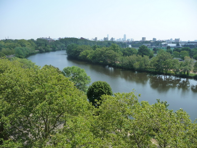 The Charles River in Cambridge, MA