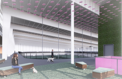 Indoor Dog Park Coming to Austin