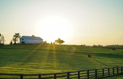 Buy A Horse Farm Virtually   Cher Revolinski   Extra Mile Homes