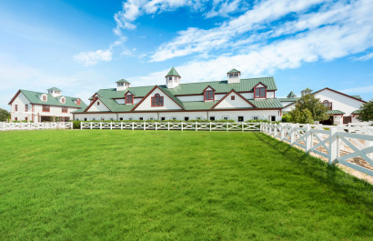 Horse Farms Attracting Buyers | Extra Mile Homes | Cher Revolinski