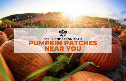 BHT | Pumpkin Patch Guide 2019