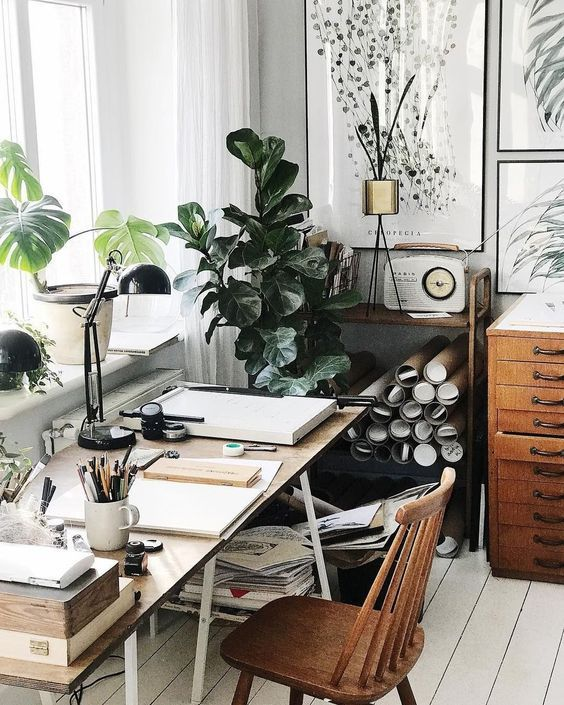 10 Small Space House Plant Display Ideas | Jethro Seymour, Top Toronto Real Estate Broker