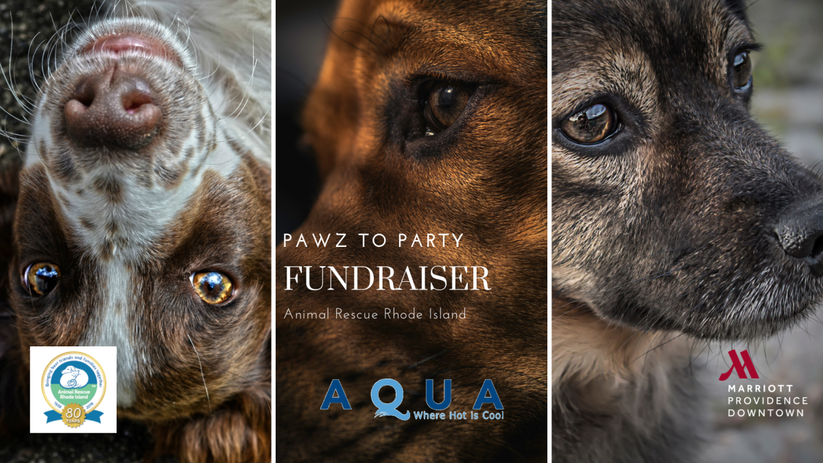 Pawz to Party at AQUA