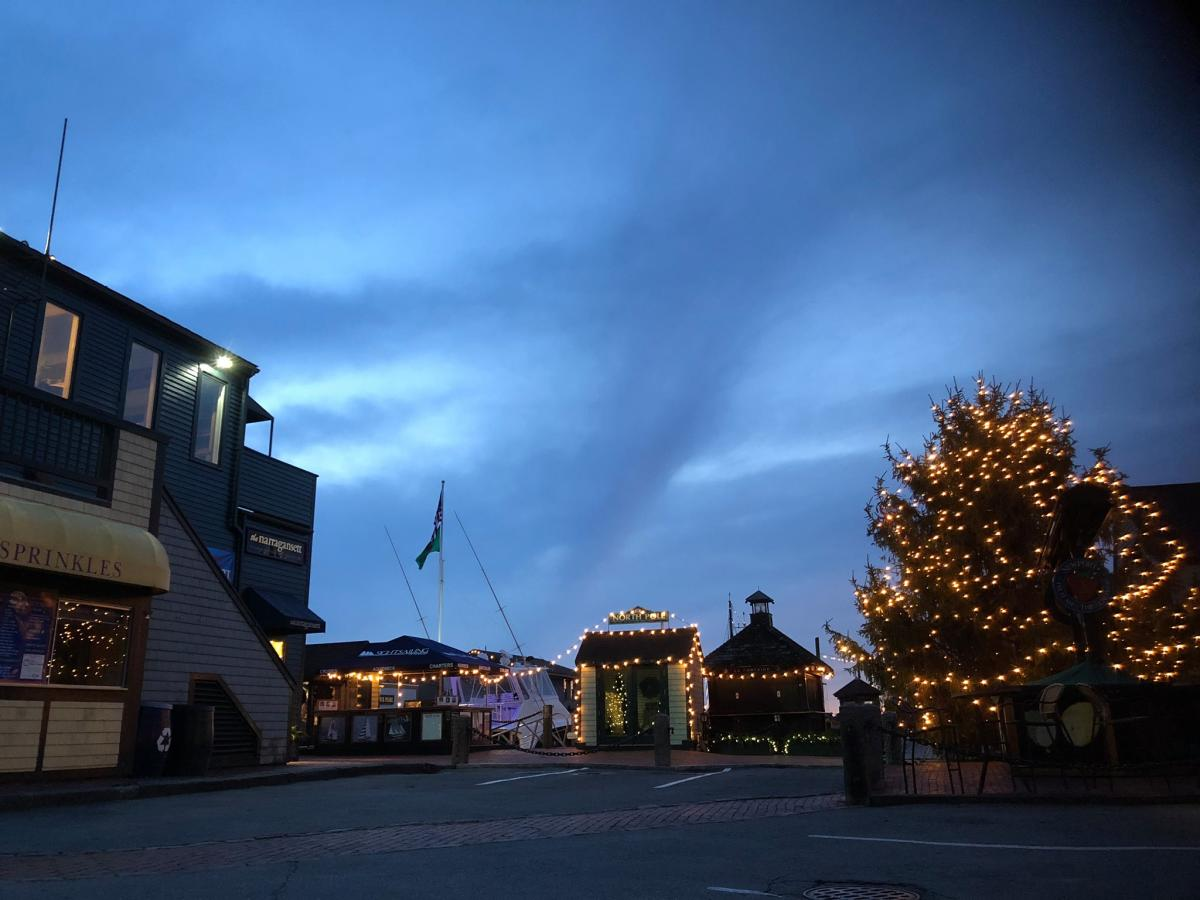 Bowen's Wharf Christmas Tree Lighting