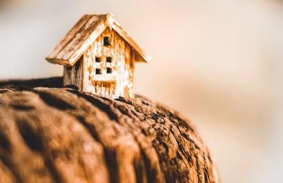 Colorado Foothills Real Estate Market Updtae