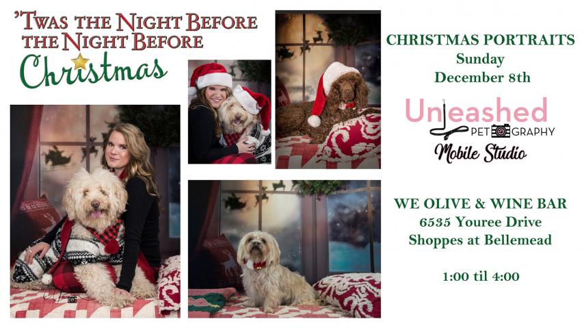 Pets on The Patio Christmas Portraits