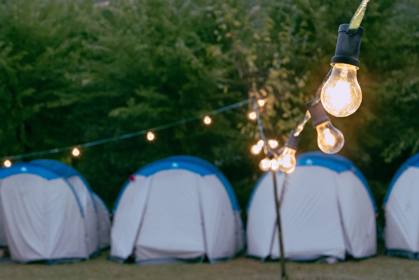 Go camping in your own backyard
