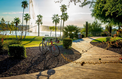 Parks in Fountain Hills, AZ