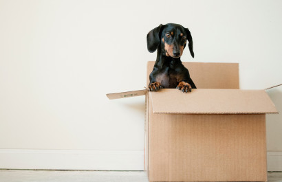 Home buyer relocation